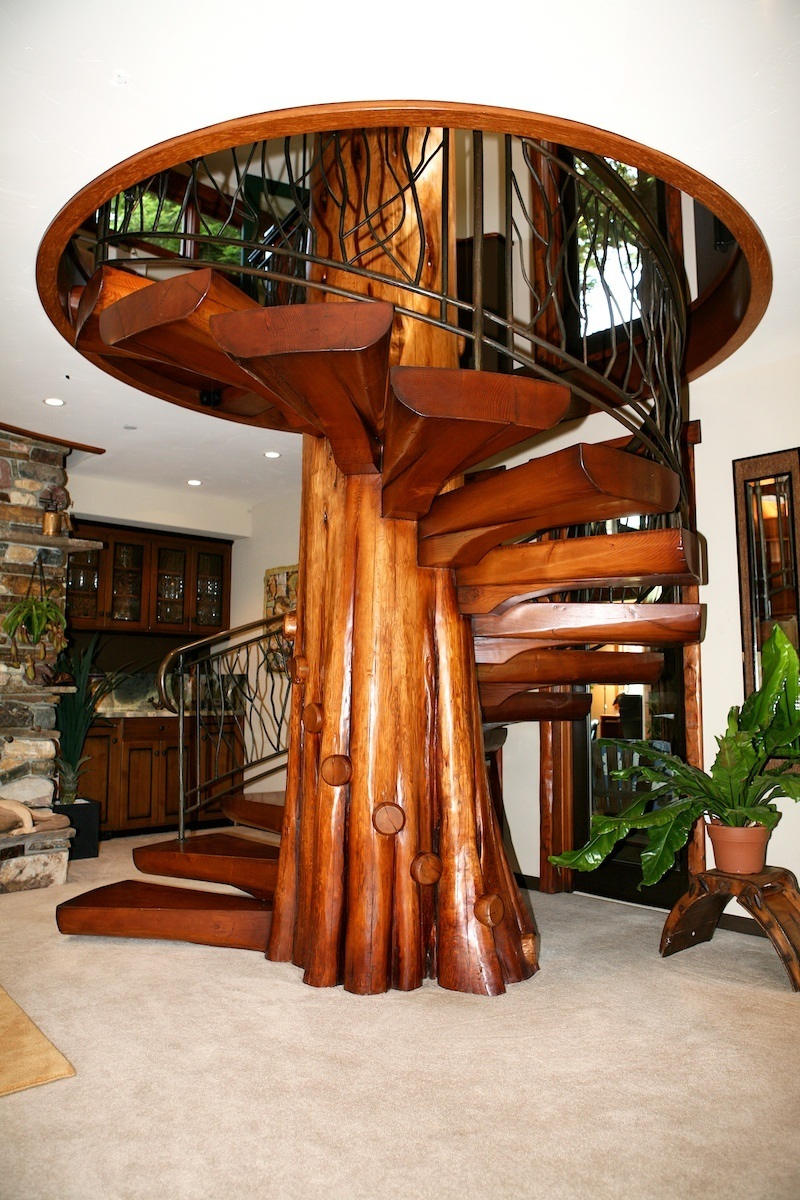Spiral staircase from fallen cedar tree for Spiral staircase house