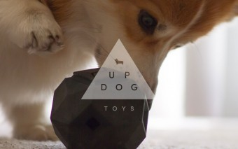 Odin: Beautiful Modular Dog Toy