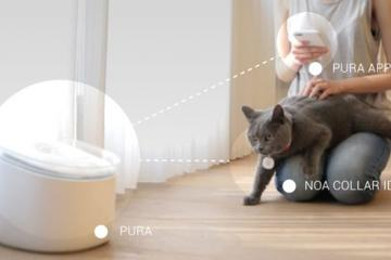 Pura: Smart Water Fountain for Cats [App-enabled]